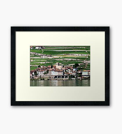 Vineyards at Lausanne Framed Print