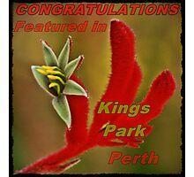 Kings Park Perth Banner Photographic Print