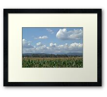 Matsqui in the Summer Framed Print