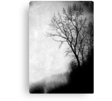 Mystic Daze Canvas Print