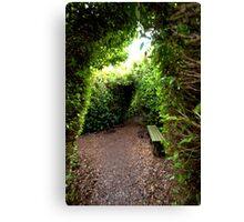 Down the Hedge Path Canvas Print