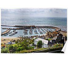 Coastal Overview ~ Lyme Regis Poster