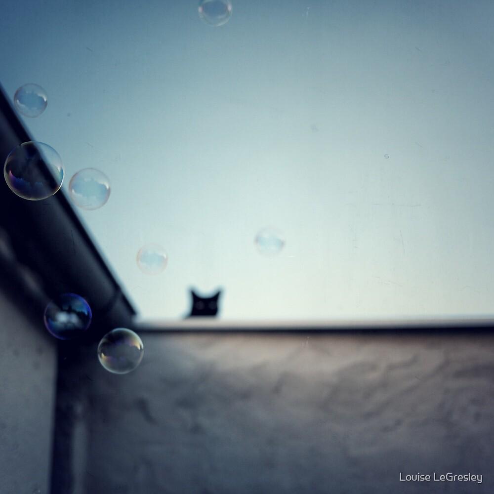 Bubble cat... by Louise LeGresley