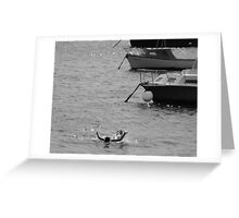 By the boats Greeting Card