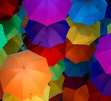 Brolly Celebration - #1 by clickedbynic