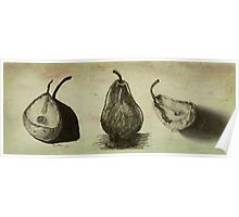 Pears ~ A Sketch Study Poster