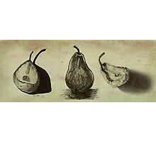 Pears ~ A Sketch Study Photographic Print