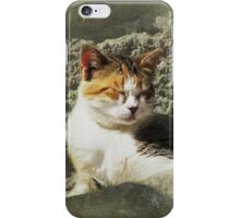 Siesta iPhone/iPod Case iPhone Case/Skin