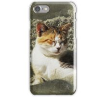 Siesta iPhone/iPod Case iPhone Case/Skin