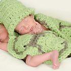 Baby Turtles by Johanne Brunet