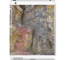 History of Sugarloaf iPad Case/Skin