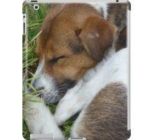 Sleeping Puppy iPad Case/Skin