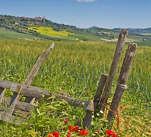 A View to Pienza by vivsworld