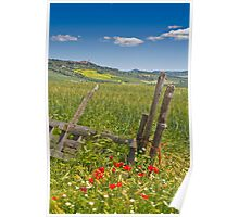 A View to Pienza Poster