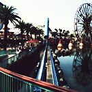 California Screamin&#x27; by lisa roberts