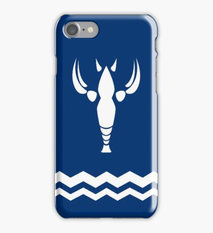 Wind Waker-Hero's New Clothes iPhone Case/Skin