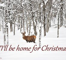 I'll be home for Christmas - Red Deer by Poete100