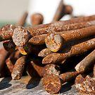 Rusty Nails by Wanda Dumas