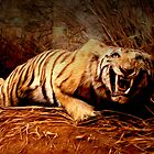 Tiger Anger by Steve's Fun Designs