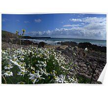 Stone Flowers Ocean sky. Poster