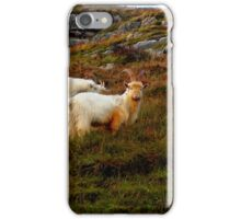 Welsh Goat  with Horns iPhone Case/Skin