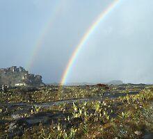 Roraima rainbow by dalsan