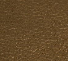 Golden color leather by homydesign