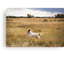 Flying through the Grass Canvas Print