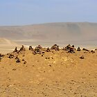 Paracas mounds by dalsan