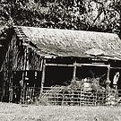 Old Timer's Barn (B&W) by © Bob Hall