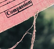 Compassion by Caroline Fournier