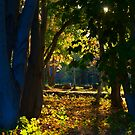 Autumn park by iPostnikov