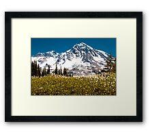Avalanche Lillies Framed Print