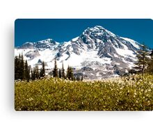 Avalanche Lillies Canvas Print