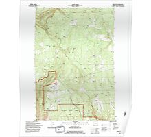 USGS Topo Map Washington State WA Appleton 239839 1994 24000 Poster