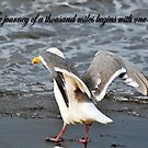 The Way Of The Seagull Motivational Saying by purplesensation