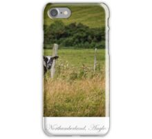 Northumberland countryside iPhone Case/Skin