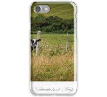Northumberland countryside iPhone Case/Skin