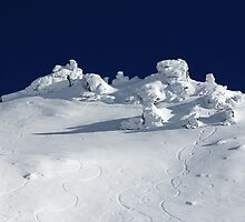 Treble Cone Summit by Charles Kosina