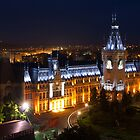 Palace of Culture by night  by Yair Karelic