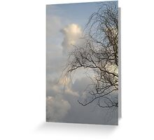 Curly Wllow Greeting Card
