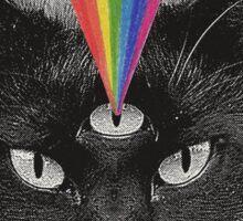 Never Shout Never - Black Cat Sticker