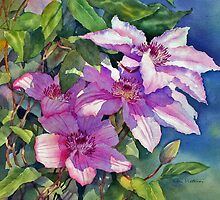 Clematis catching the sun by Ann Mortimer