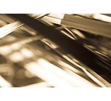 ABR0042 Photographic Print
