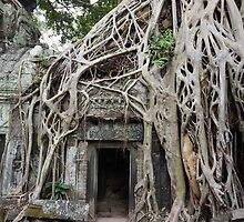 Temples of Angkor by PerkyBeans