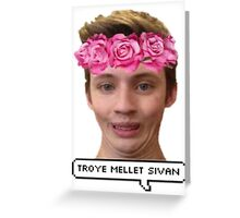 Troye Mellet Sivan Greeting Card