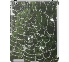 Rainy Web iPad Case/Skin