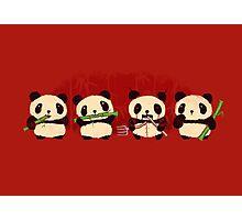 Robot Panda Photographic Print
