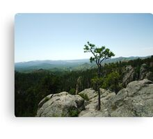 Black Hills of South Dakota Canvas Print