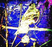 Crow On Tree by SianStargazer